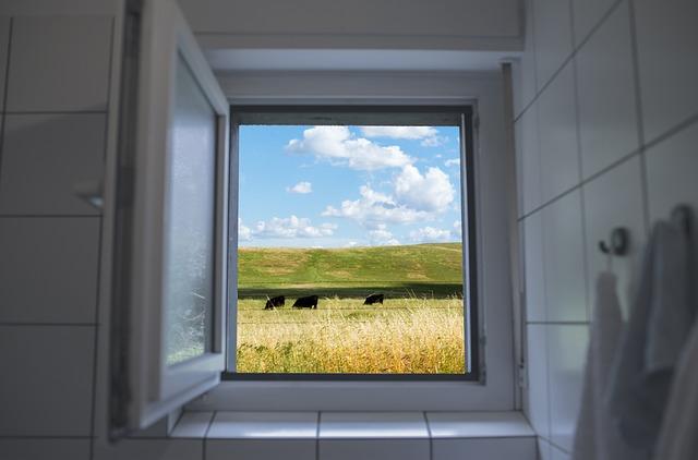 okno na pastvu