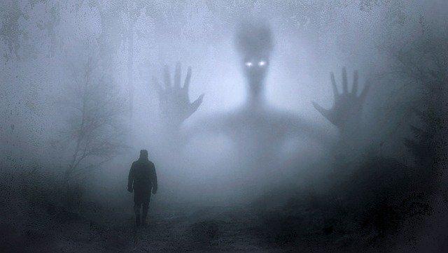 fantazie v lese